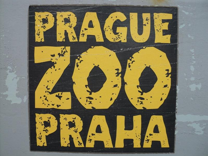 Nakladac Locust 752 V Zoo Praha Www Kohut Cz